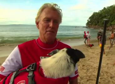 Noosa Fesitival of Surfing Has Gone to the Dogs