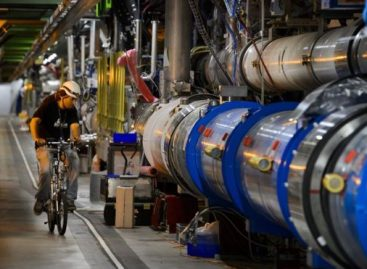 Large Hadron Collider: Weasel Causes Shutdown