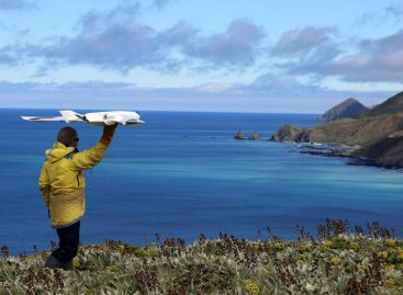 Call to Minimize Drone Impact on Wildlife