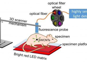 Rice University Researchers Use Spectral Triangulation to Pinpoint Location of Tumors