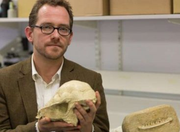 Mammals Almost Wiped Out With the Dinosaurs