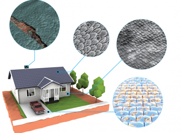 Living Structural Materials Could Open New Horizons for Engineers and Architects