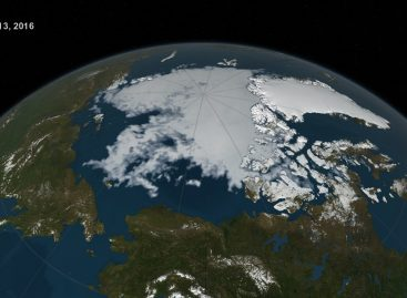 Good Job Humanity, NASA Has Accepted Sad Levels of Sea Ice As a 'New Normal'