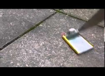 This Is Why Phone Batteries Keep Exploding