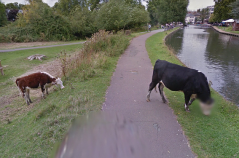 Google Street View Blurs Bullocks's Face