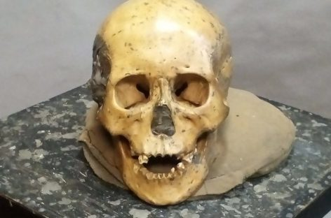 Research Finds Little Genetic Change Since Stone Age in East Asia