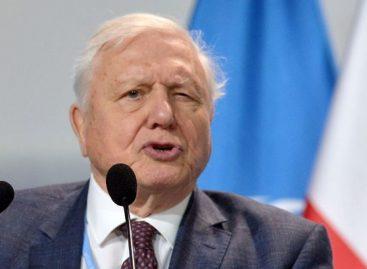 David Attenborough Predicts the Collapse of Cilivization