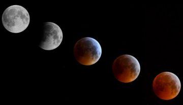 "Skywatchers See ""Super Blood Wolf Moon"""